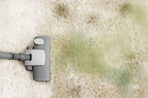 protect your family's health with professional carpet cleaning